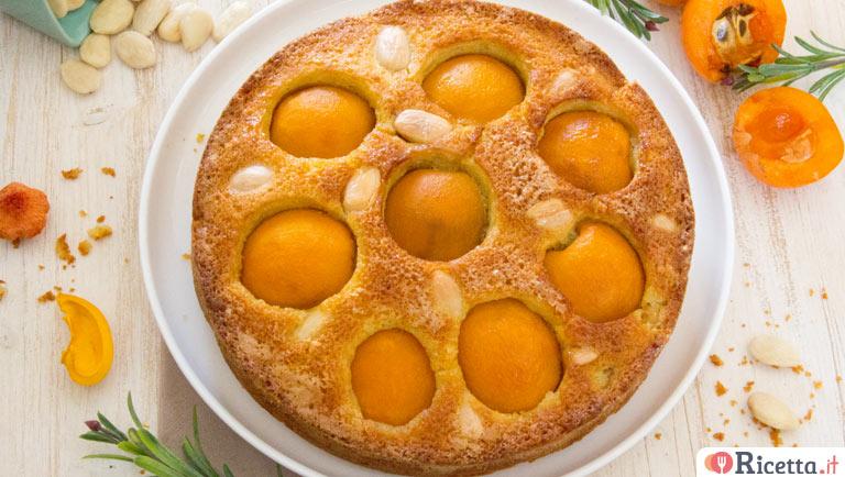Ricetta torta di nespole consigli e ingredienti for Sinonimo di veloce